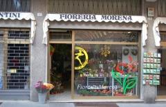 FIORERIA MORENA di D'Alessandro Luca